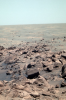Water in the soil on Mars