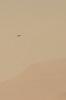 Mars UFO in day