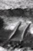 Mars anomaly close up